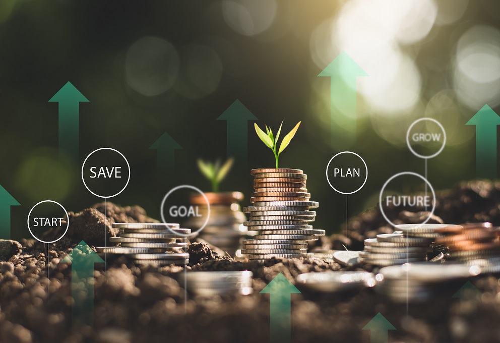Como investir pra diversificar seus investimentos da forma correta