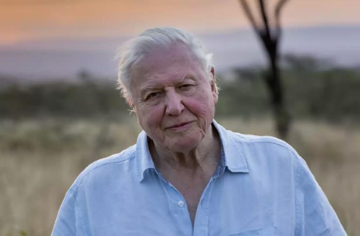 Sir David Attenborough deixa Instagram apenas dois meses após entrar na rede social