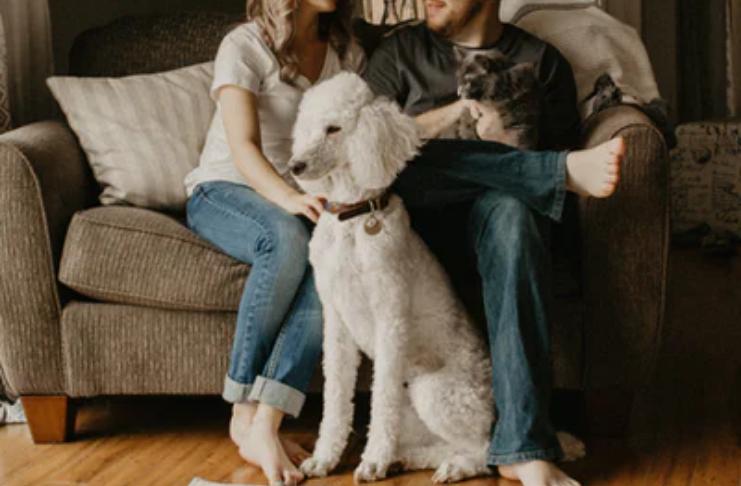 5 dicas financeiras para criar um animal de estimação