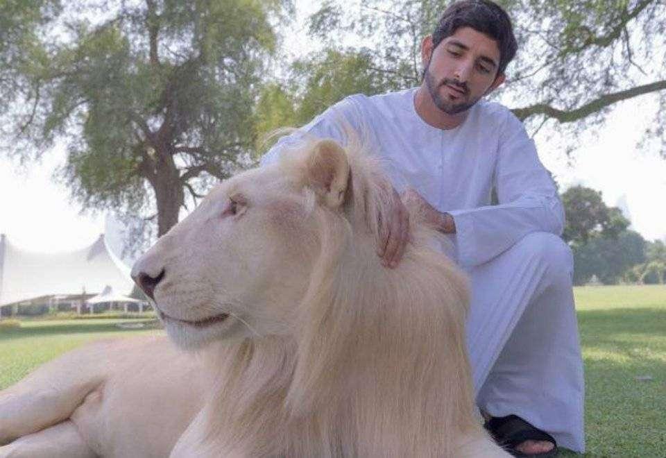 Hamdan bin Mohammed é o príncipe de Dubai, que faz sucesso no Instagram